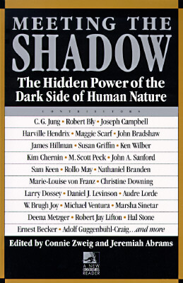 Meeting-the-Shadow