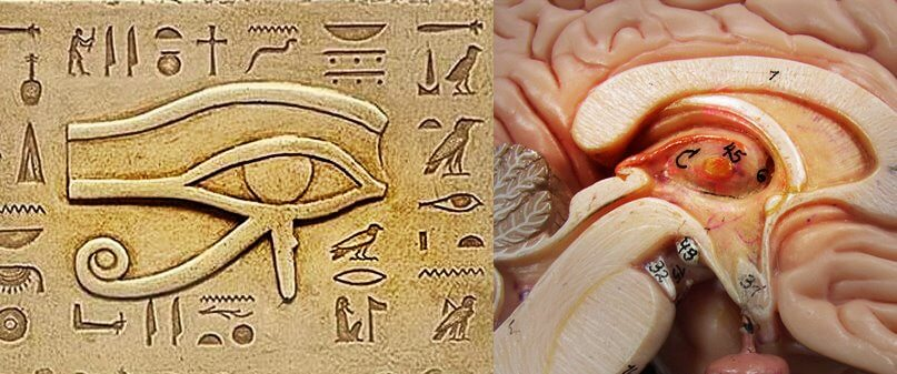 third eye activation Egypt
